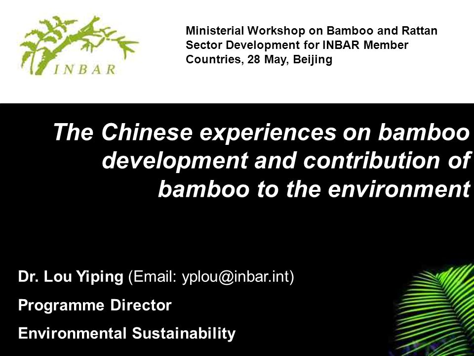 The Chinese experiences on bamboo development and contribution of bamboo to the environment Ministerial Workshop on Bamboo and Rattan Sector Development for INBAR Member Countries, 28 May, Beijing Dr.
