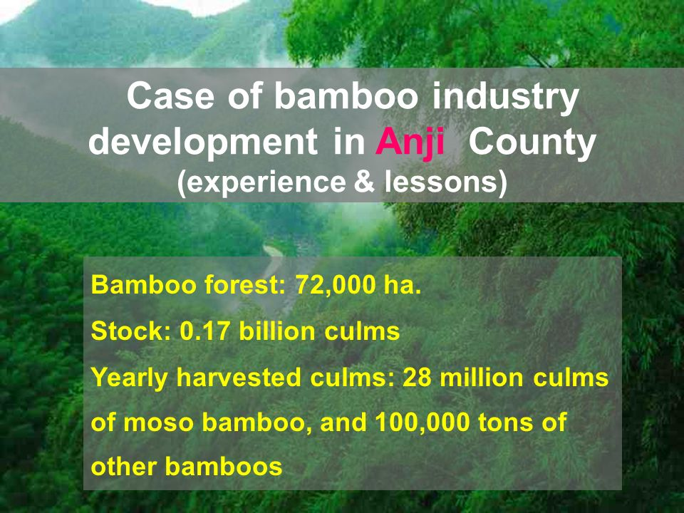 Bamboo forest: 72,000 ha.
