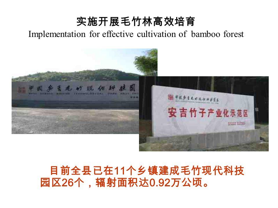 实施开展毛竹林高效培育 Implementation for effective cultivation of bamboo forest 目前全县已在 11 个乡镇建成毛竹现代科技 园区 26 个,辐射面积达 0.92 万公顷。