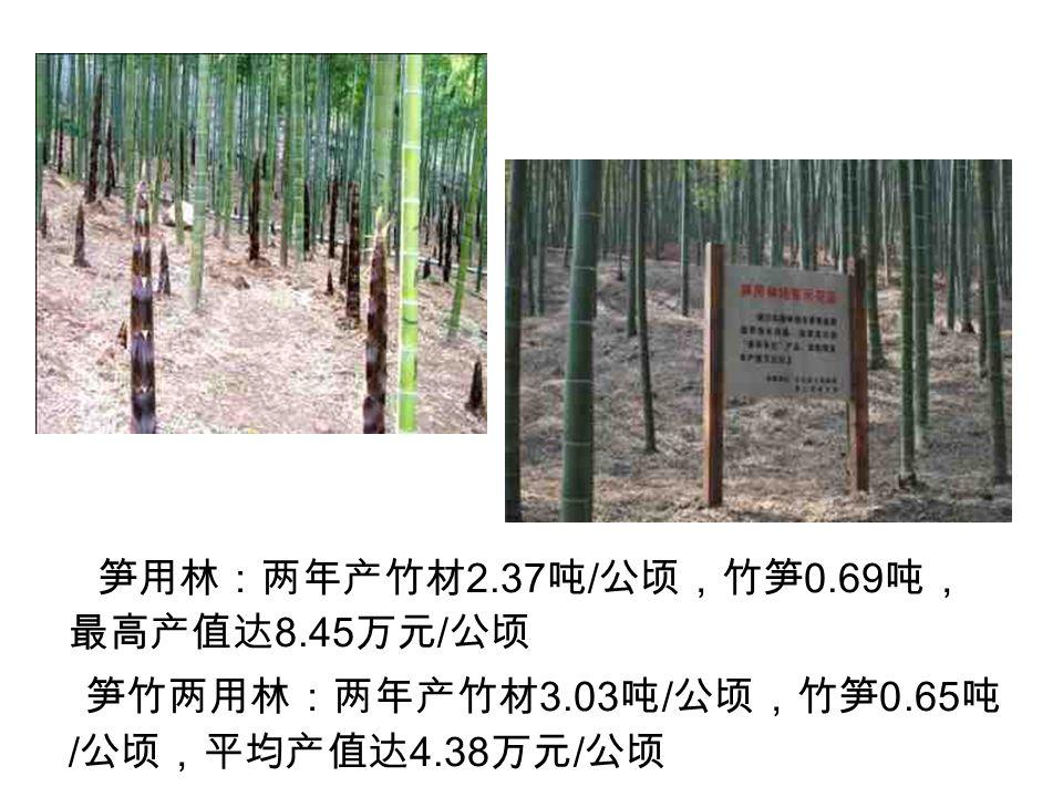 笋用林:两年产竹材 2.37 吨 / 公顷,竹笋 0.69 吨, 最高产值达 8.45 万元 / 公顷 笋竹两用林:两年产竹材 3.03 吨 / 公顷,竹笋 0.65 吨 / 公顷,平均产值达 4.38 万元 / 公顷