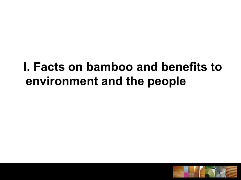 I. Facts on bamboo and benefits to environment and the people
