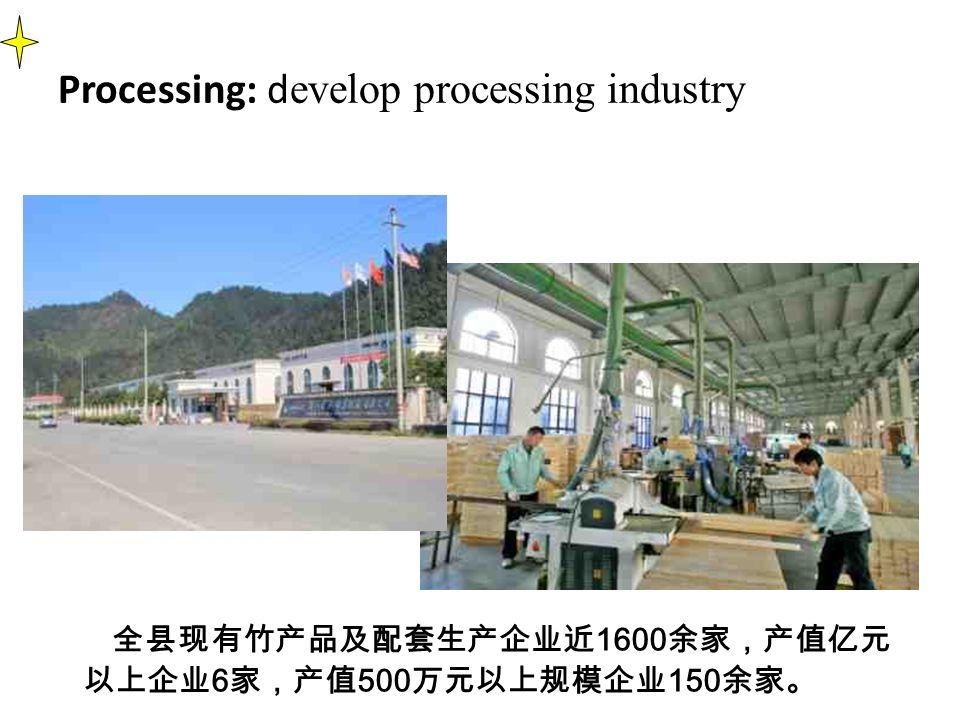 Processing: d evelop processing industry 全县现有竹产品及配套生产企业近 1600 余家,产值亿元 以上企业 6 家,产值 500 万元以上规模企业 150 余家。