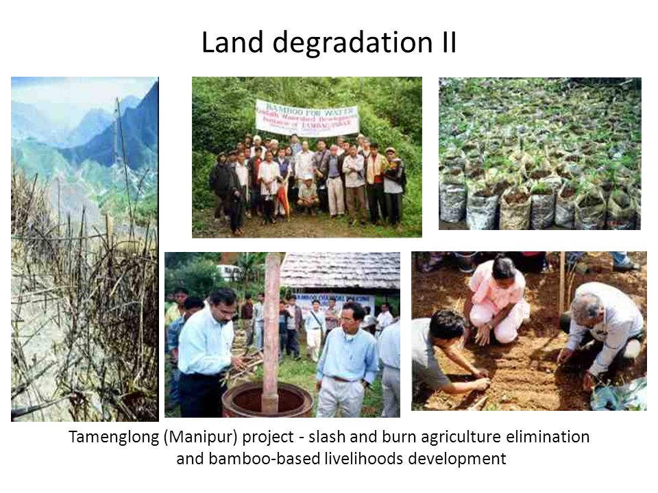 Land degradation II Tamenglong (Manipur) project - slash and burn agriculture elimination and bamboo-based livelihoods development