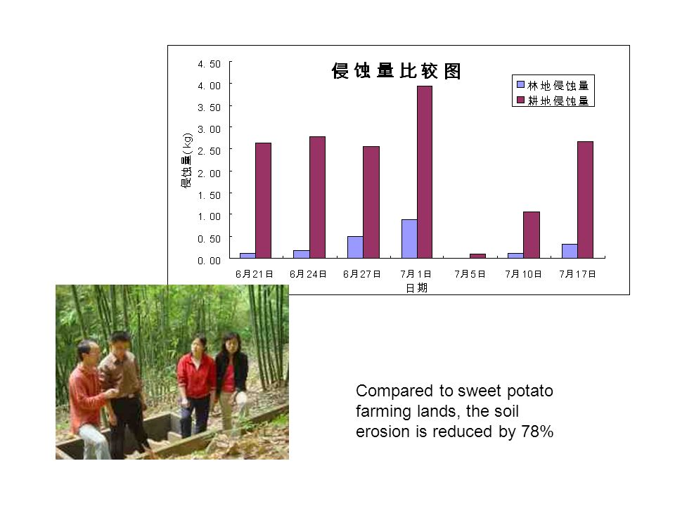 Compared to sweet potato farming lands, the soil erosion is reduced by 78%