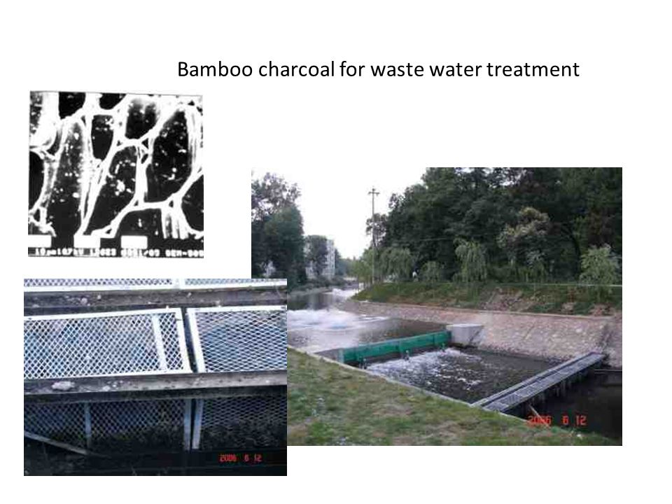 Bamboo charcoal for waste water treatment