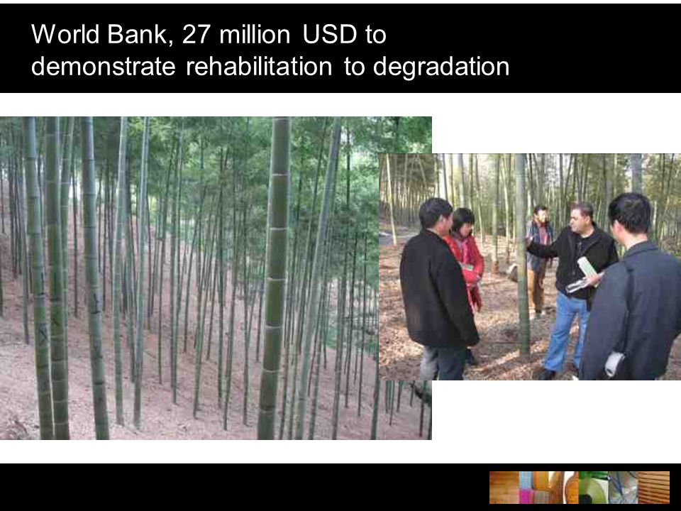 World Bank, 27 million USD to demonstrate rehabilitation to degradation