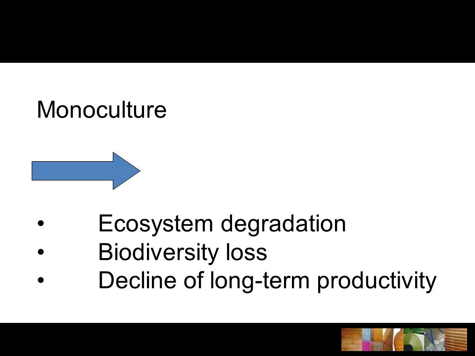 Monoculture Ecosystem degradation Biodiversity loss Decline of long-term productivity