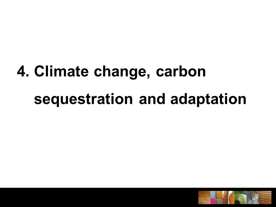 4. Climate change, carbon sequestration and adaptation