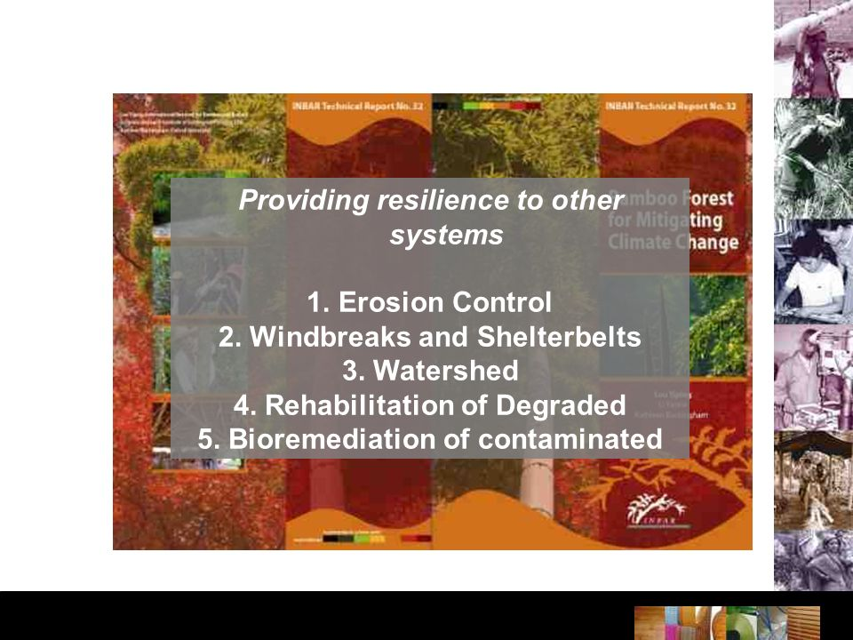 Providing resilience to other systems 1.Erosion Control 2.