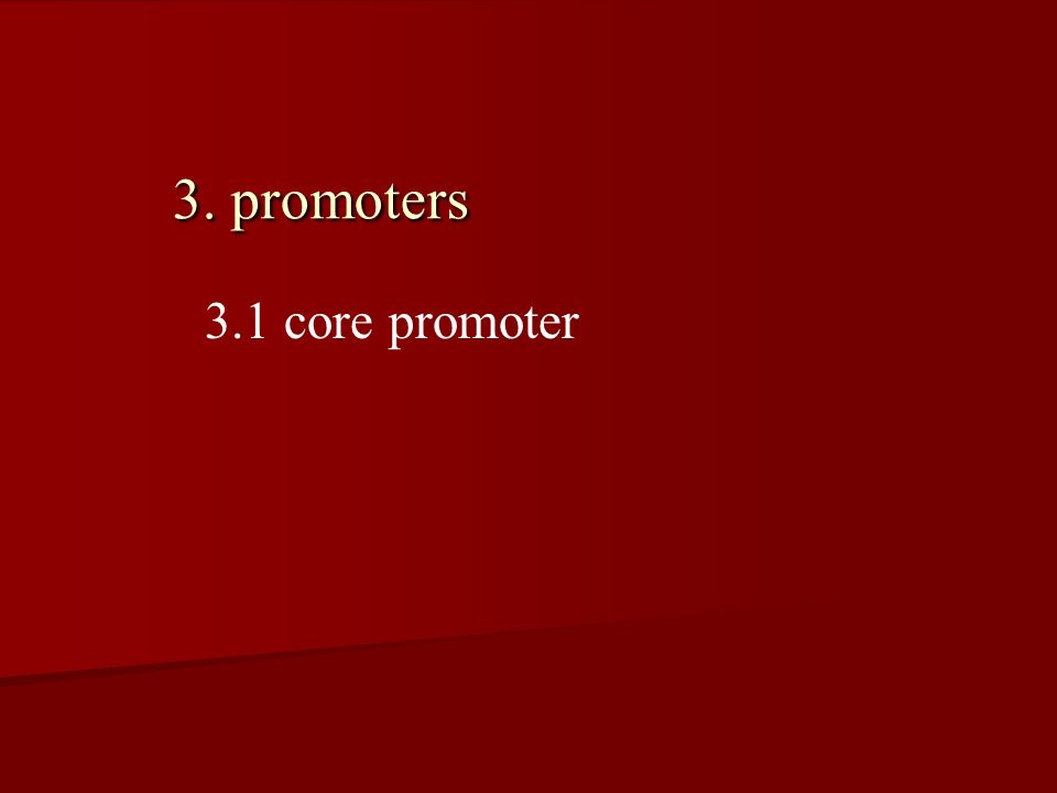 3. promoters 3.1 core promoter