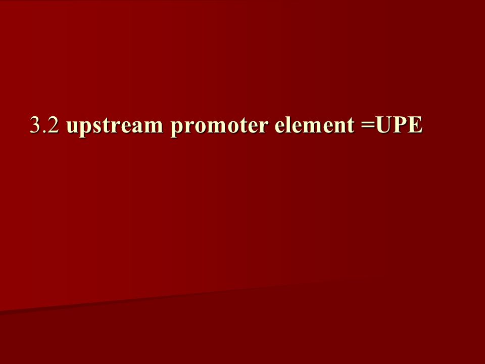 3.2 upstream promoter element =UPE