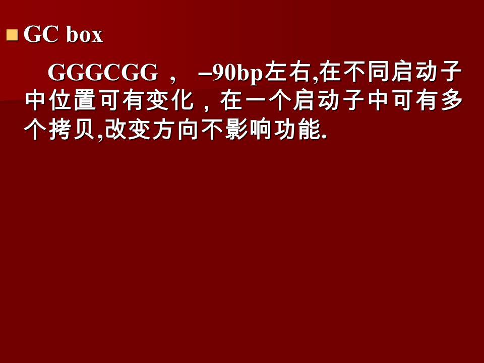 GC box GC box GGGCGG, – 90bp 左右, 在不同启动子 中位置可有变化,在一个启动子中可有多 个拷贝, 改变方向不影响功能.