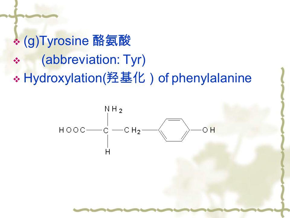  (g)Tyrosine 酪氨酸  (abbreviation: Tyr)  Hydroxylation( 羟基化) of phenylalanine