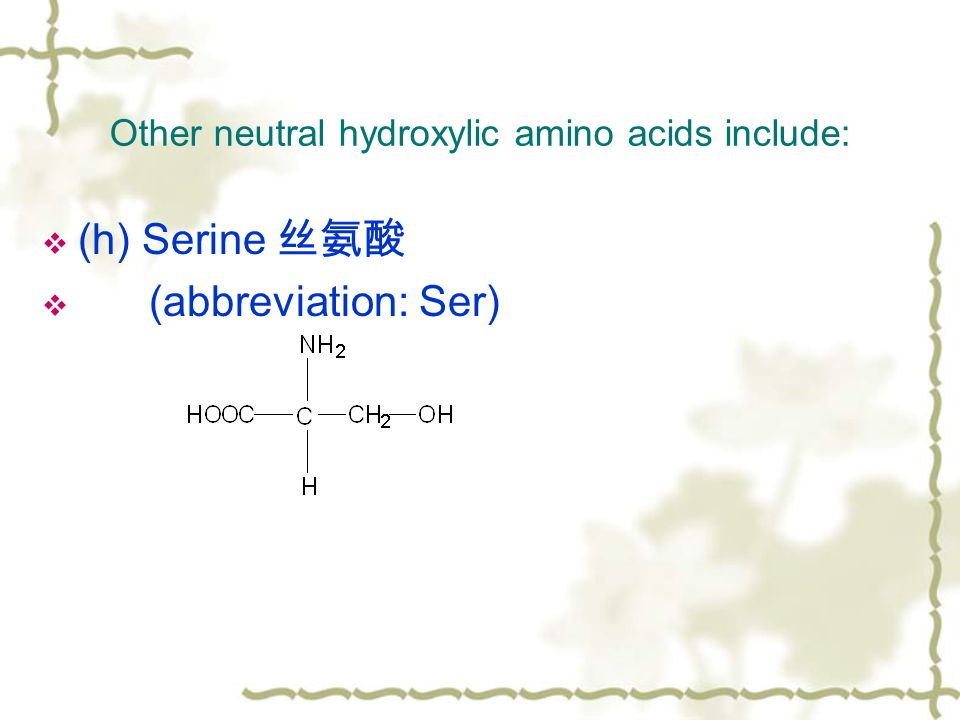Other neutral hydroxylic amino acids include:  (h) Serine 丝氨酸  (abbreviation: Ser)