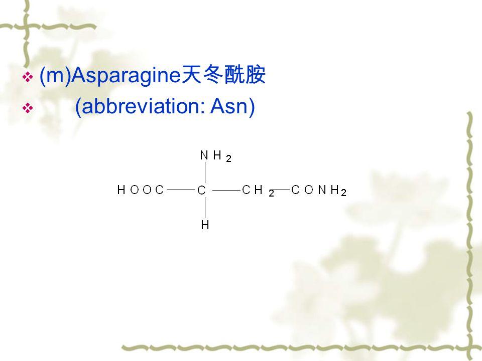  (m)Asparagine 天冬酰胺  (abbreviation: Asn)