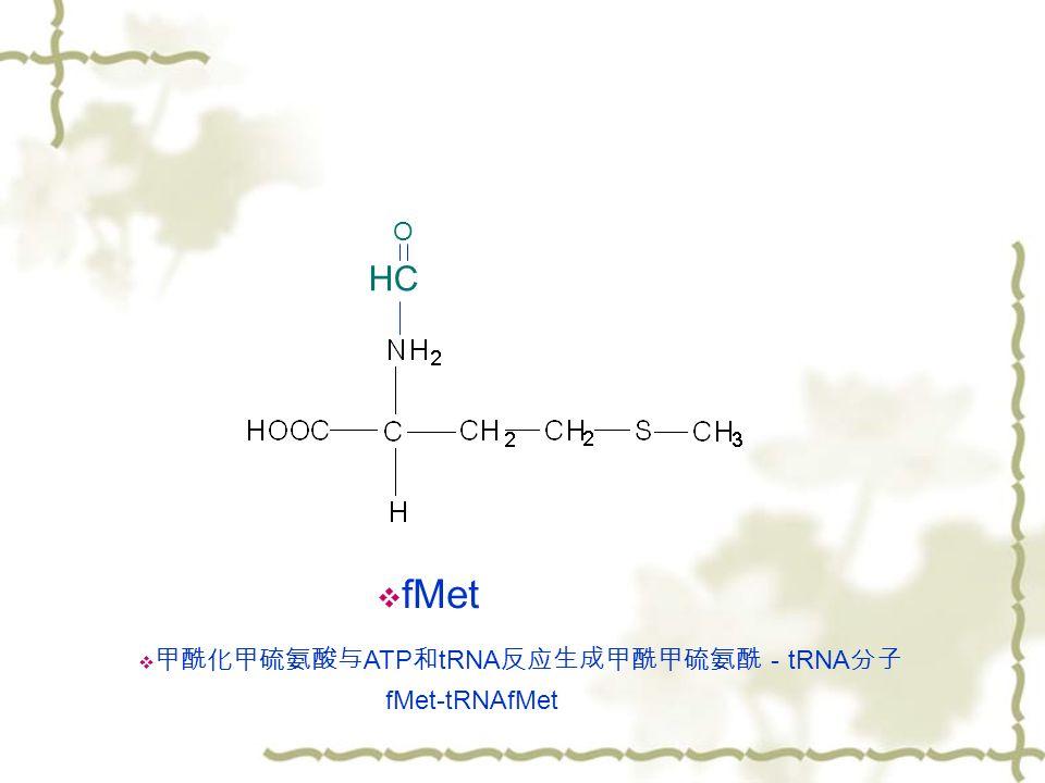 HC O  fMet  甲酰化甲硫氨酸与 ATP 和 tRNA 反应生成甲酰甲硫氨酰- tRNA 分子 fMet-tRNAfMet