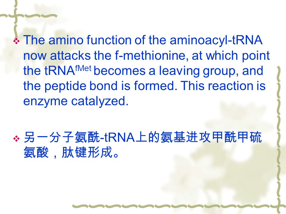  The amino function of the aminoacyl-tRNA now attacks the f-methionine, at which point the tRNA fMet becomes a leaving group, and the peptide bond is formed.