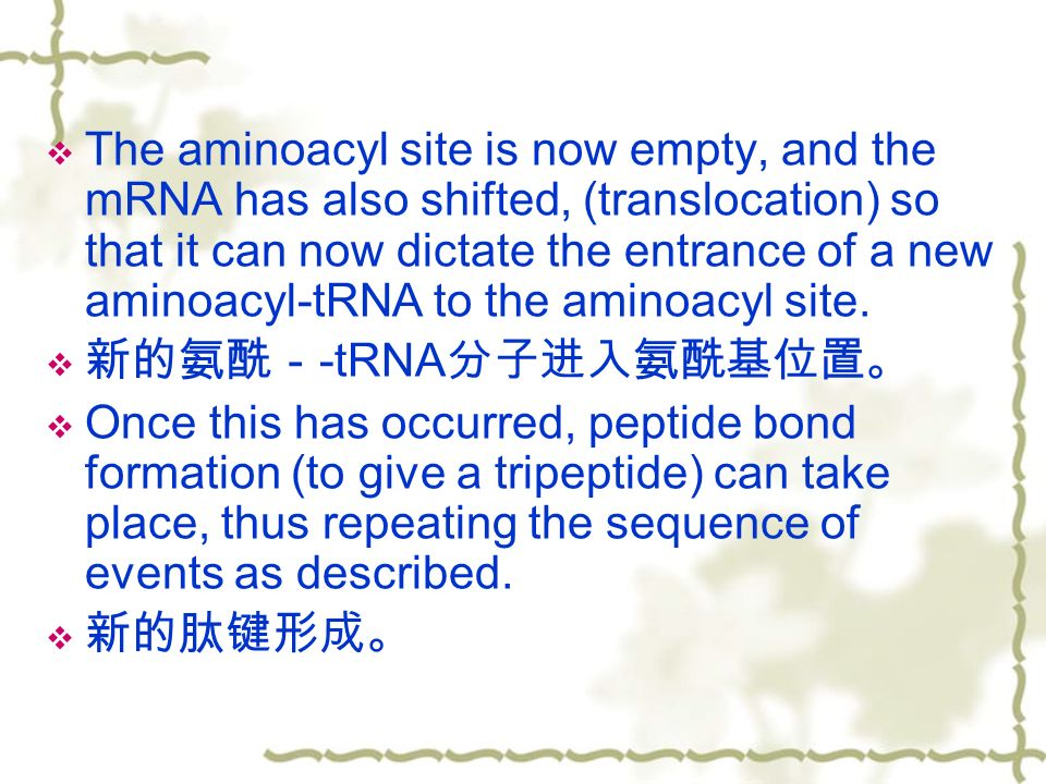  The aminoacyl site is now empty, and the mRNA has also shifted, (translocation) so that it can now dictate the entrance of a new aminoacyl-tRNA to the aminoacyl site.