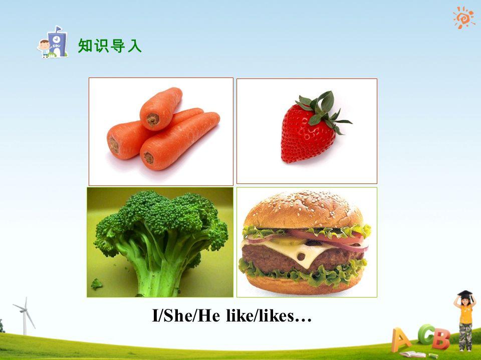 I/She/He like/likes… 知识导入