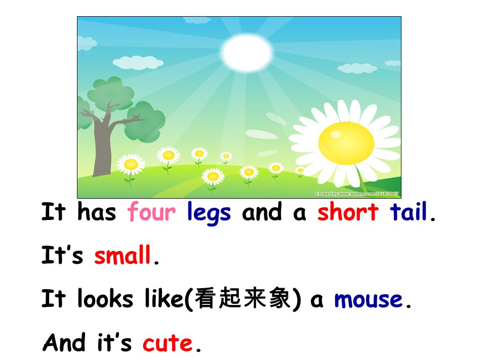 It has four legs and a short tail. It's small. It looks like( 看起来象 ) a mouse. And it's cute.