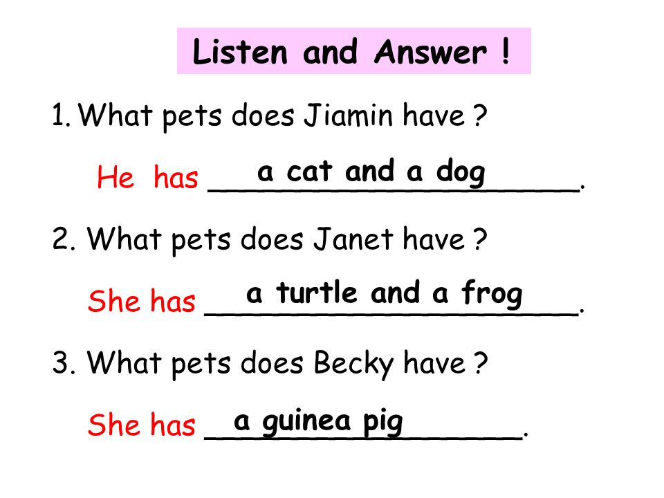 Listen and Answer . 1.What pets does Jiamin have .
