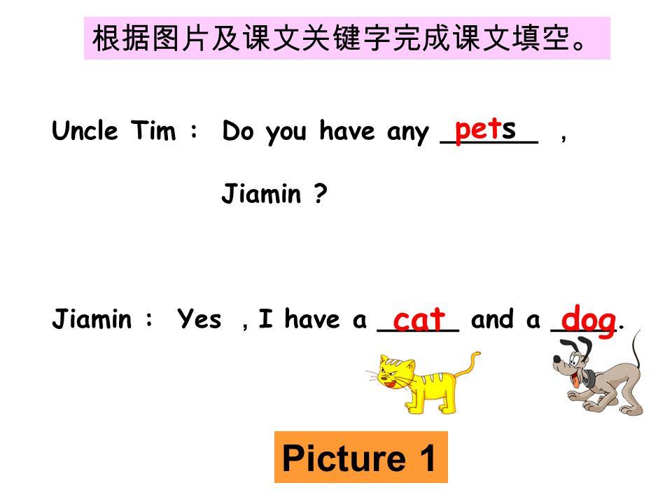 根据图片及课文关键字完成课文填空。 Uncle Tim : Do you have any ______ , Jiamin .