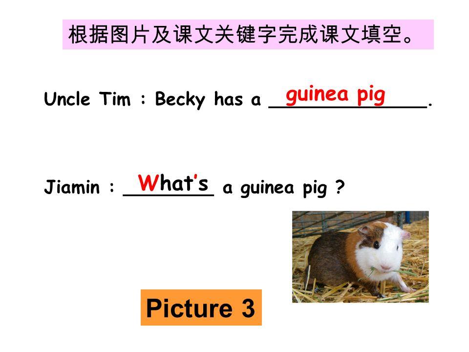 根据图片及课文关键字完成课文填空。 Uncle Tim : Becky has a ______________.