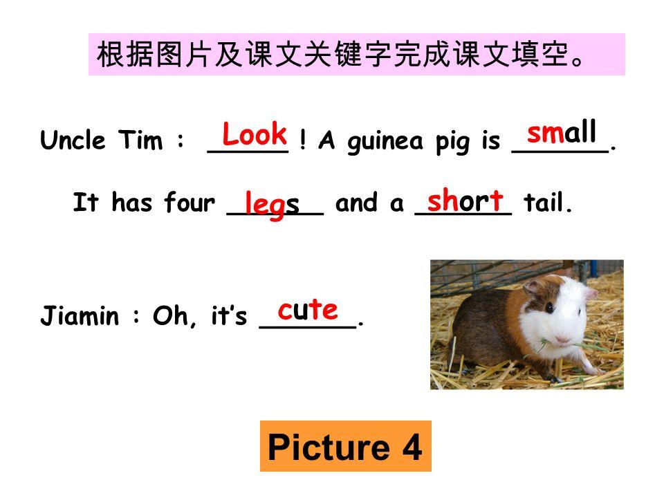 根据图片及课文关键字完成课文填空。 Uncle Tim : _____ . A guinea pig is ______.