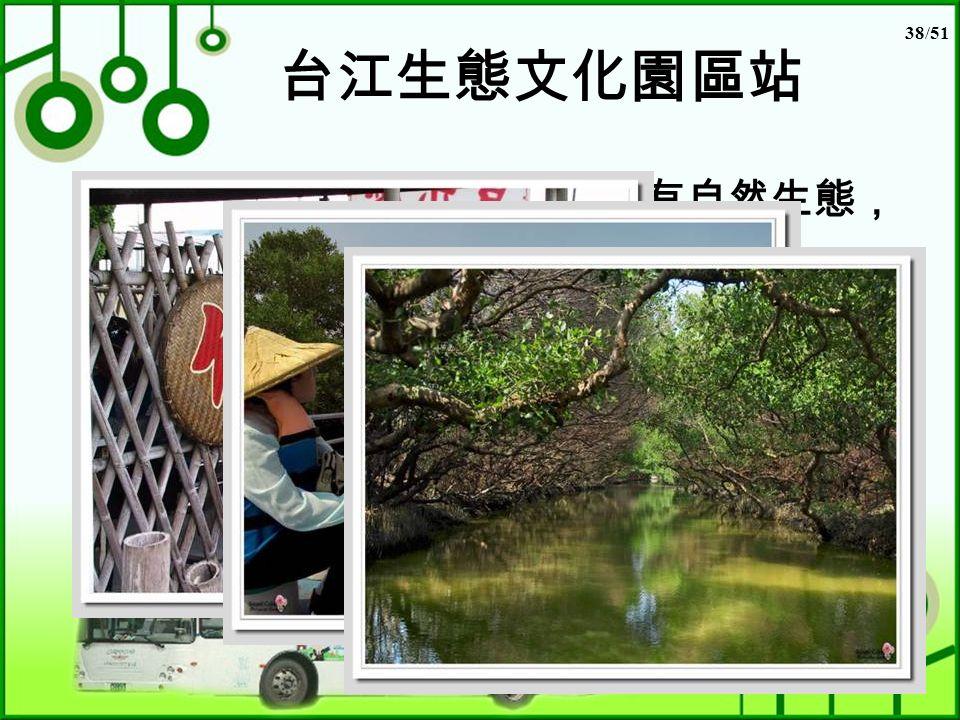 38/51 台江生態文化園區站 台江生態文化園區不只有自然生態, 且具有古戰場的歷史遺跡! 在生態方面,它是台灣沿海最豐富 的溼地,不但有許多紅樹林,更有 紅樹林交織而成的「綠色隧道」