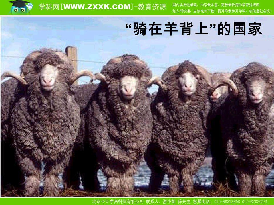 骑在羊背上 的国家