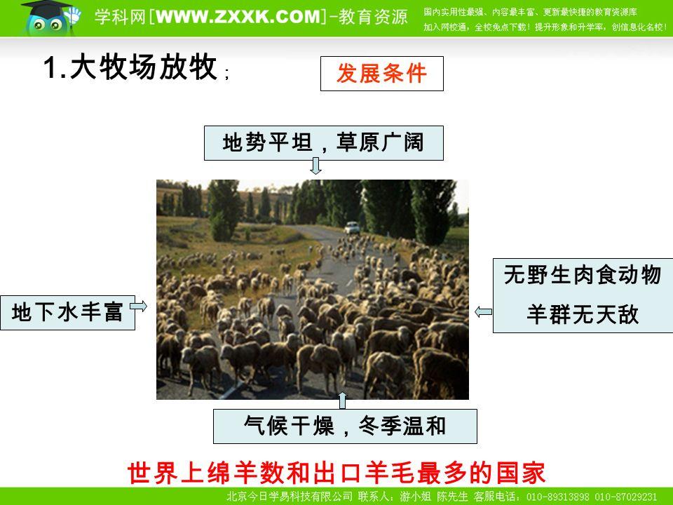 1. 大牧场放牧 ; 世界上绵羊数和出口羊毛最多的国家 地势平坦,草原广阔 发展条件 地下水丰富 无野生肉食动物 羊群无天敌 气候干燥,冬季温和