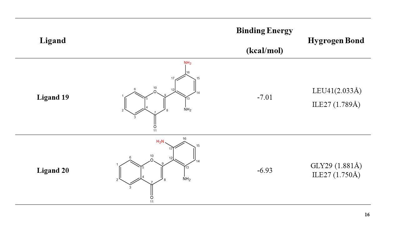 16 Ligand Binding Energy (kcal/mol) Hygrogen Bond Ligand 19-7.01 LEU41(2.033Å) ILE27 (1.789Å) Ligand 20-6.93 GLY29 (1.881Å) ILE27 (1.750Å)