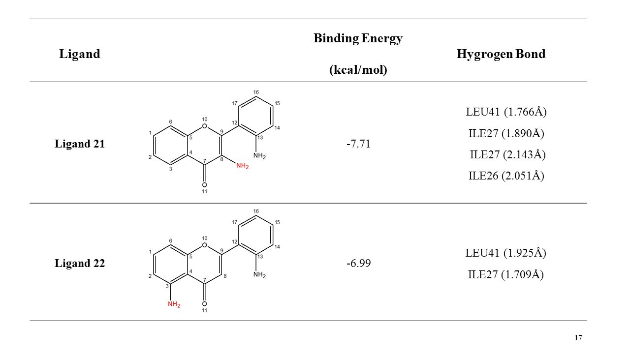 17 Ligand Binding Energy (kcal/mol) Hygrogen Bond Ligand 21-7.71 LEU41 (1.766Å) ILE27 (1.890Å) ILE27 (2.143Å) ILE26 (2.051Å) Ligand 22-6.99 LEU41 (1.925Å) ILE27 (1.709Å)