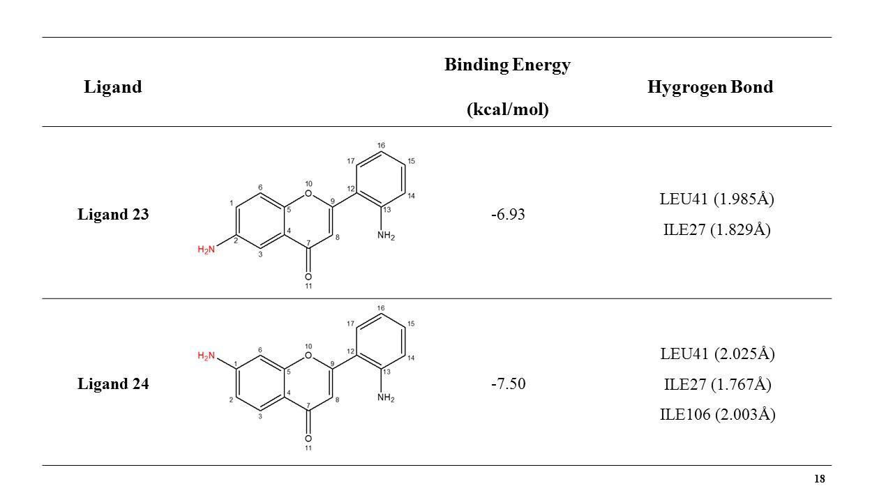 18 Ligand Binding Energy (kcal/mol) Hygrogen Bond Ligand 23-6.93 LEU41 (1.985Å) ILE27 (1.829Å) Ligand 24-7.50 LEU41 (2.025Å) ILE27 (1.767Å) ILE106 (2.003Å)