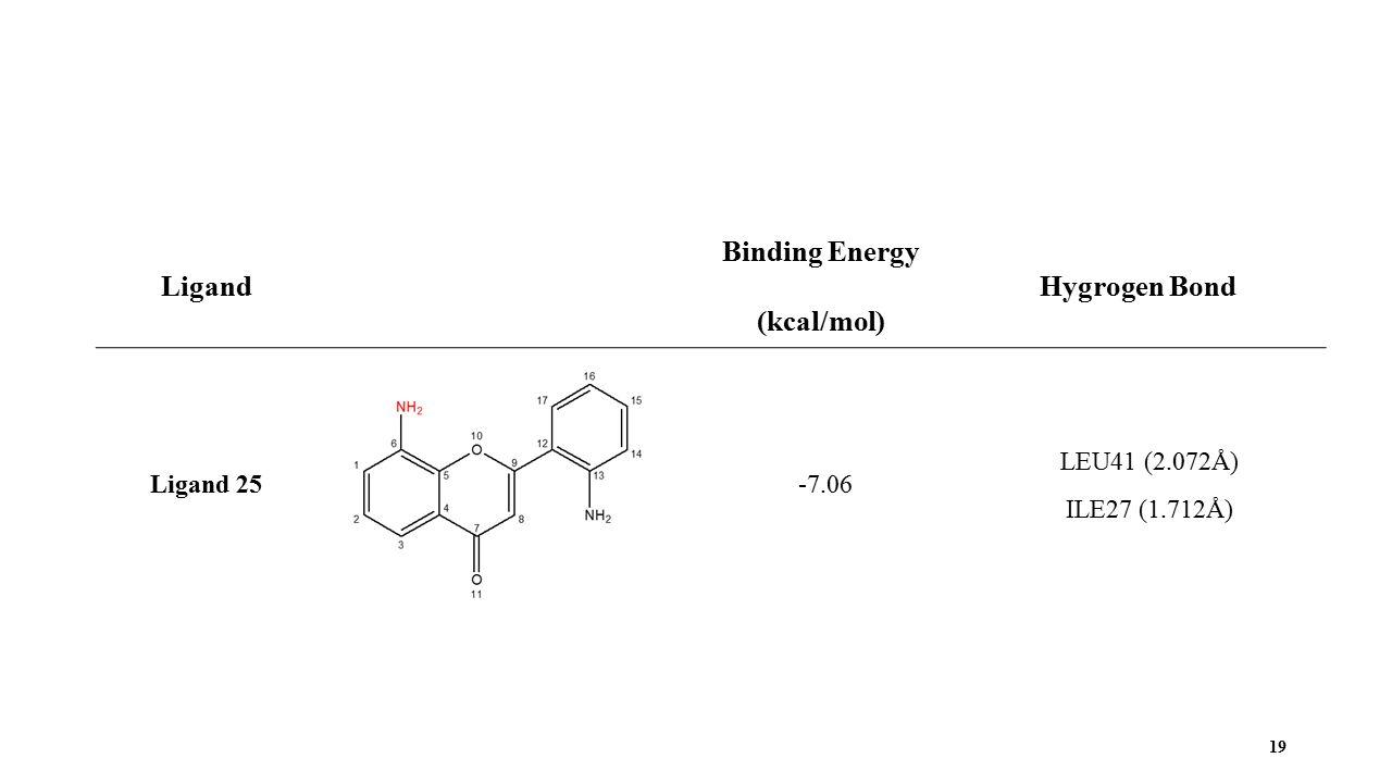 19 Ligand Binding Energy (kcal/mol) Hygrogen Bond Ligand 25 -7.06 LEU41 (2.072Å) ILE27 (1.712Å)