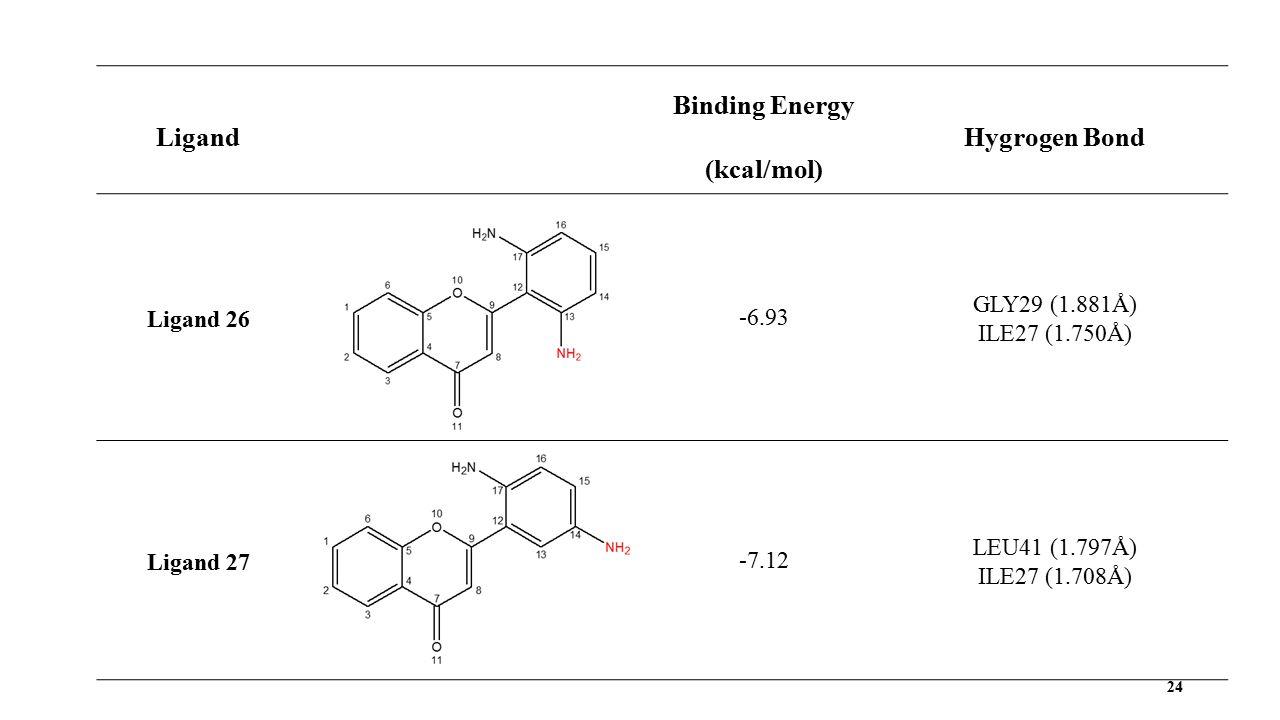 24 Ligand Binding Energy (kcal/mol) Hygrogen Bond Ligand 26 -6.93 GLY29 (1.881Å) ILE27 (1.750Å) Ligand 27-7.12 LEU41 (1.797Å) ILE27 (1.708Å)
