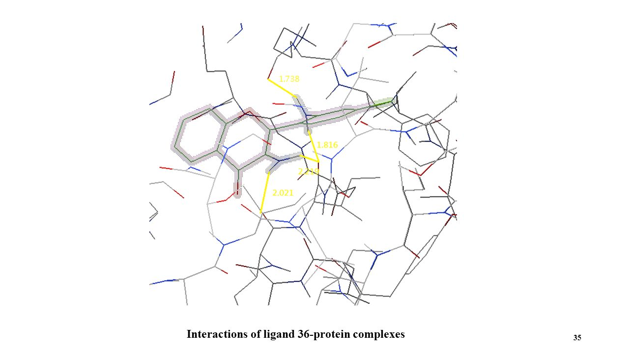 Interactions of ligand 36-protein complexes 35