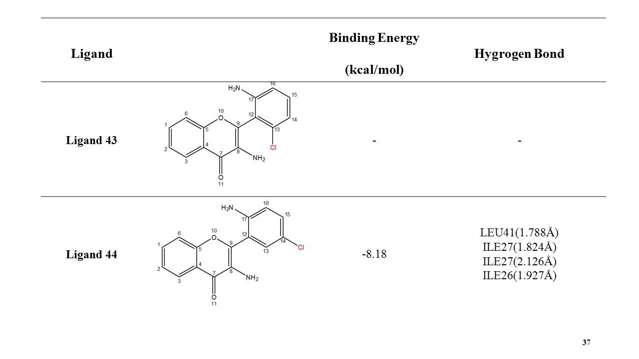37 Ligand Binding Energy (kcal/mol) Hygrogen Bond Ligand 43 - - Ligand 44 -8.18 LEU41(1.788Å) ILE27(1.824Å) ILE27(2.126Å) ILE26(1.927Å)