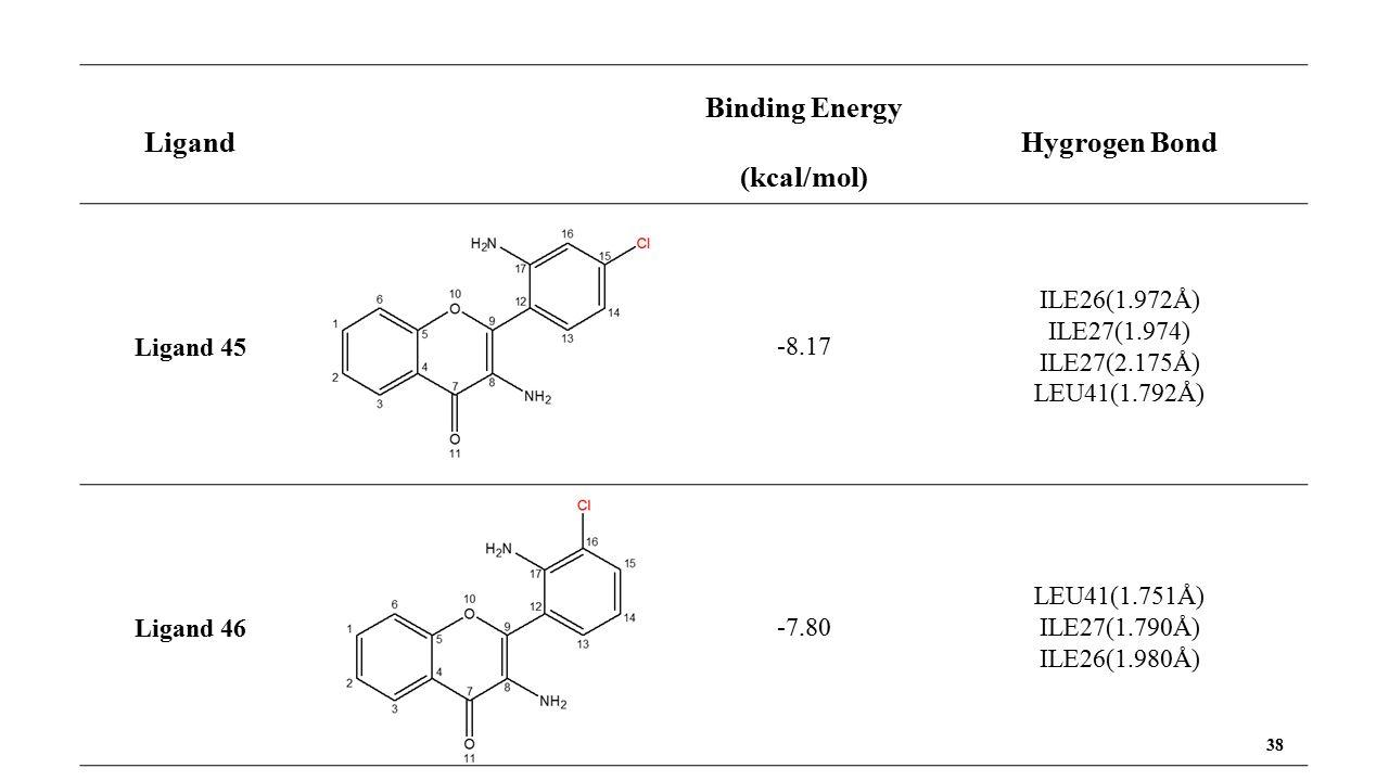 38 Ligand Binding Energy (kcal/mol) Hygrogen Bond Ligand 45 -8.17 ILE26(1.972Å) ILE27(1.974) ILE27(2.175Å) LEU41(1.792Å) Ligand 46 -7.80 LEU41(1.751Å) ILE27(1.790Å) ILE26(1.980Å)