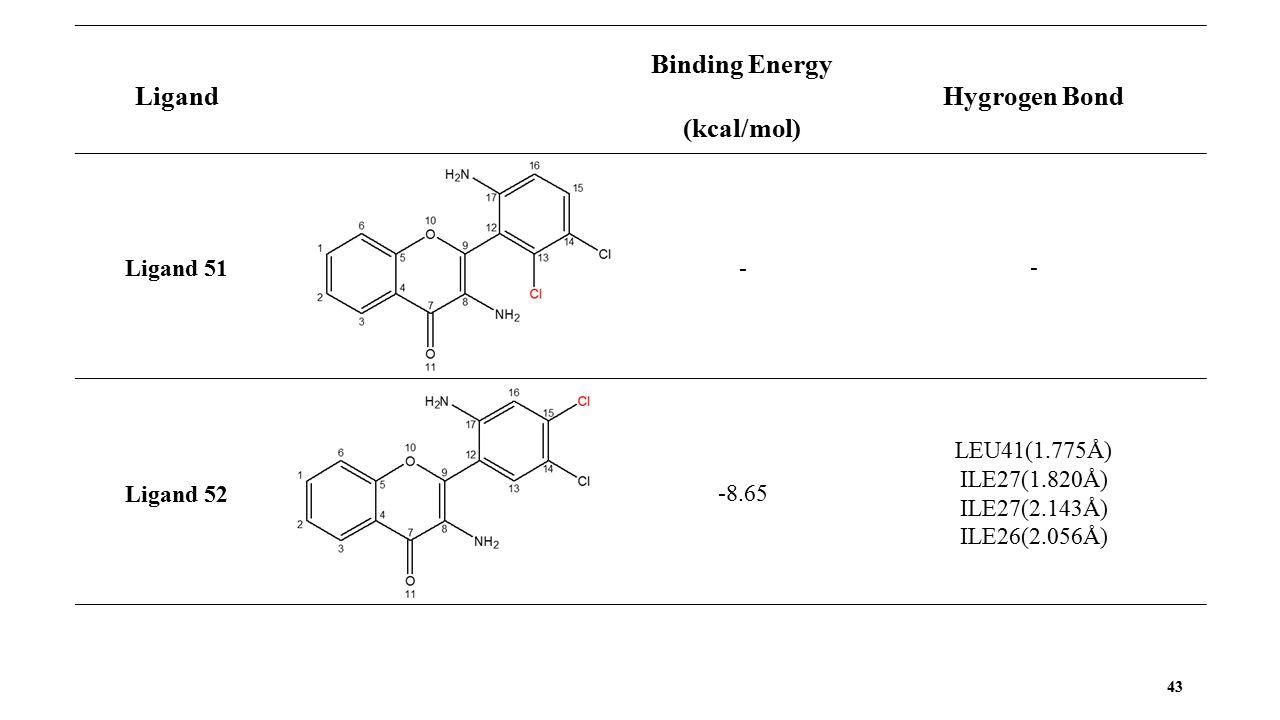 43 Ligand Binding Energy (kcal/mol) Hygrogen Bond Ligand 51 - - Ligand 52 -8.65 LEU41(1.775Å) ILE27(1.820Å) ILE27(2.143Å) ILE26(2.056Å)