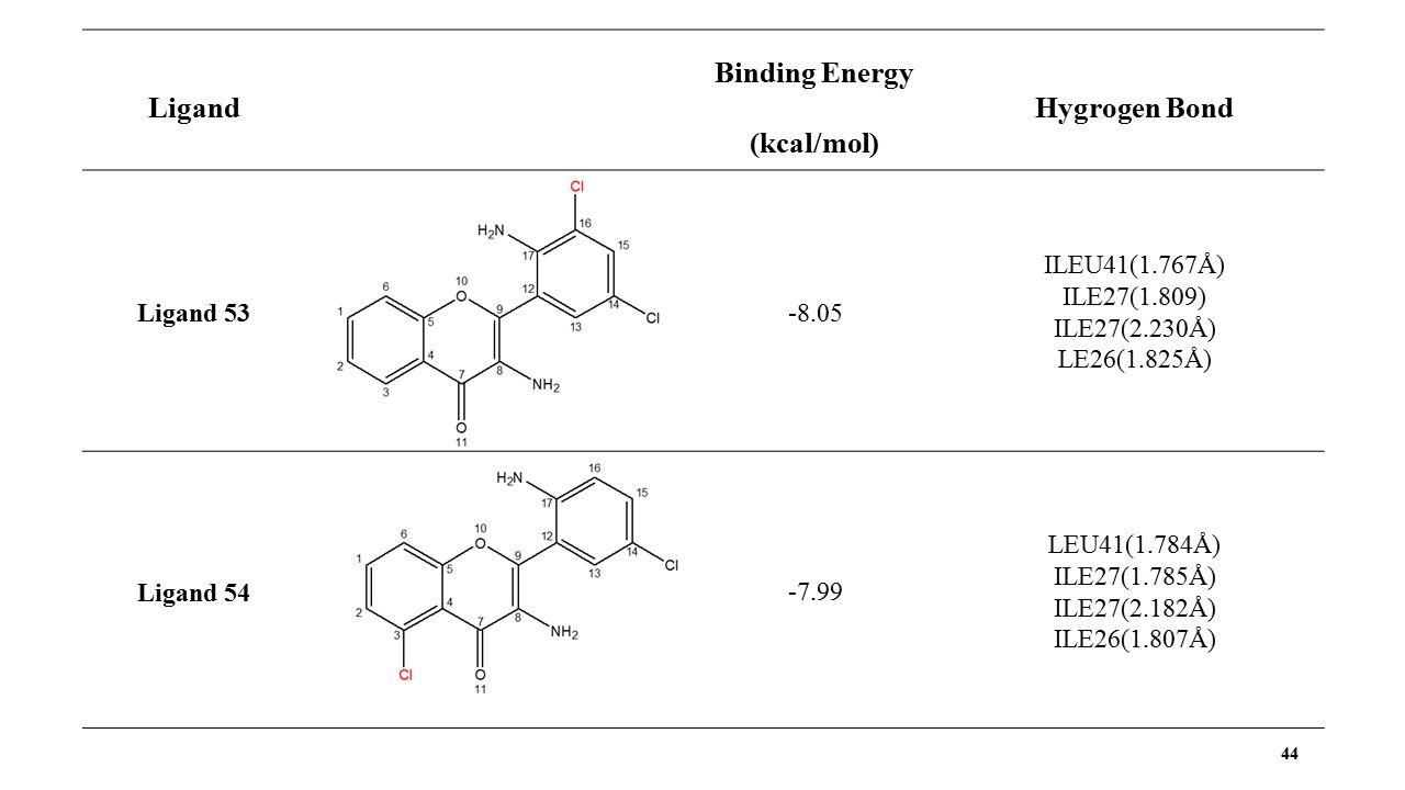 44 Ligand Binding Energy (kcal/mol) Hygrogen Bond Ligand 53 -8.05 ILEU41(1.767Å) ILE27(1.809) ILE27(2.230Å) LE26(1.825Å) Ligand 54 -7.99 LEU41(1.784Å) ILE27(1.785Å) ILE27(2.182Å) ILE26(1.807Å)