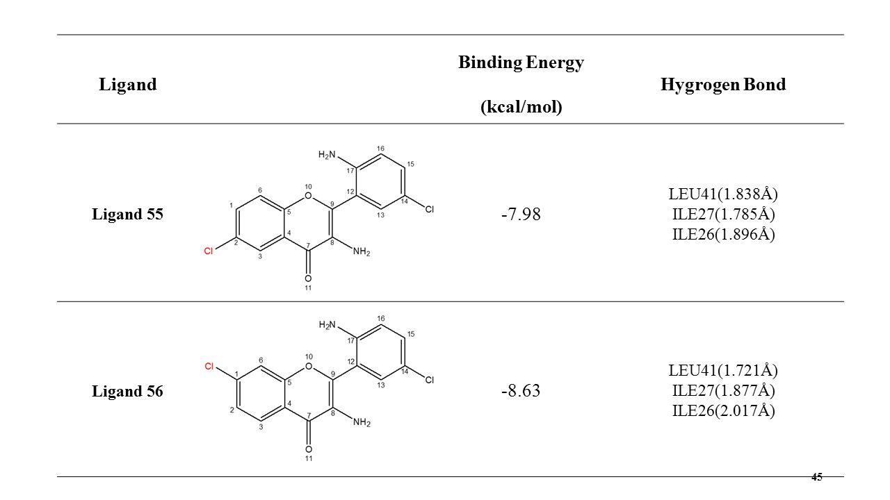 45 Ligand Binding Energy (kcal/mol) Hygrogen Bond Ligand 55 -7.98 LEU41(1.838Å) ILE27(1.785Å) ILE26(1.896Å) Ligand 56 -8.63 LEU41(1.721Å) ILE27(1.877Å) ILE26(2.017Å)