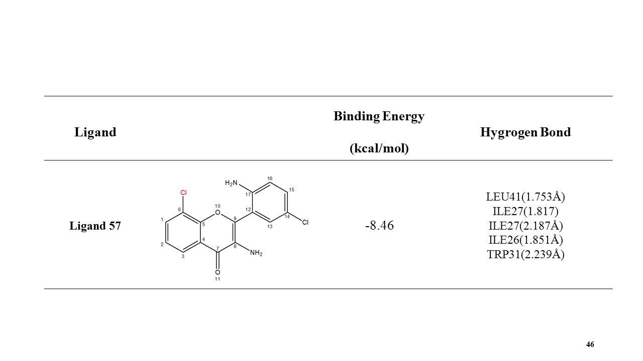46 Ligand Binding Energy (kcal/mol) Hygrogen Bond Ligand 57 -8.46 LEU41(1.753Å) ILE27(1.817) ILE27(2.187Å) ILE26(1.851Å) TRP31(2.239Å)