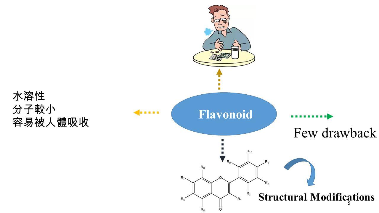 Structural Modifications 水溶性 分子較小 容易被人體吸收 5 Few drawback