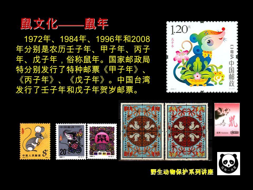 野生动物保护系列讲座 1972 年、 1984 年、 1996 年和 2008 年分别是农历壬子年、甲子年、丙子 年、戊子年,俗称鼠年。国家邮政局 特分别发行了特种邮票《甲子年》、 《丙子年》、《戊子年》。中国台湾 发行了壬子年和戊子年贺岁邮票。 鼠文化 —— 鼠年