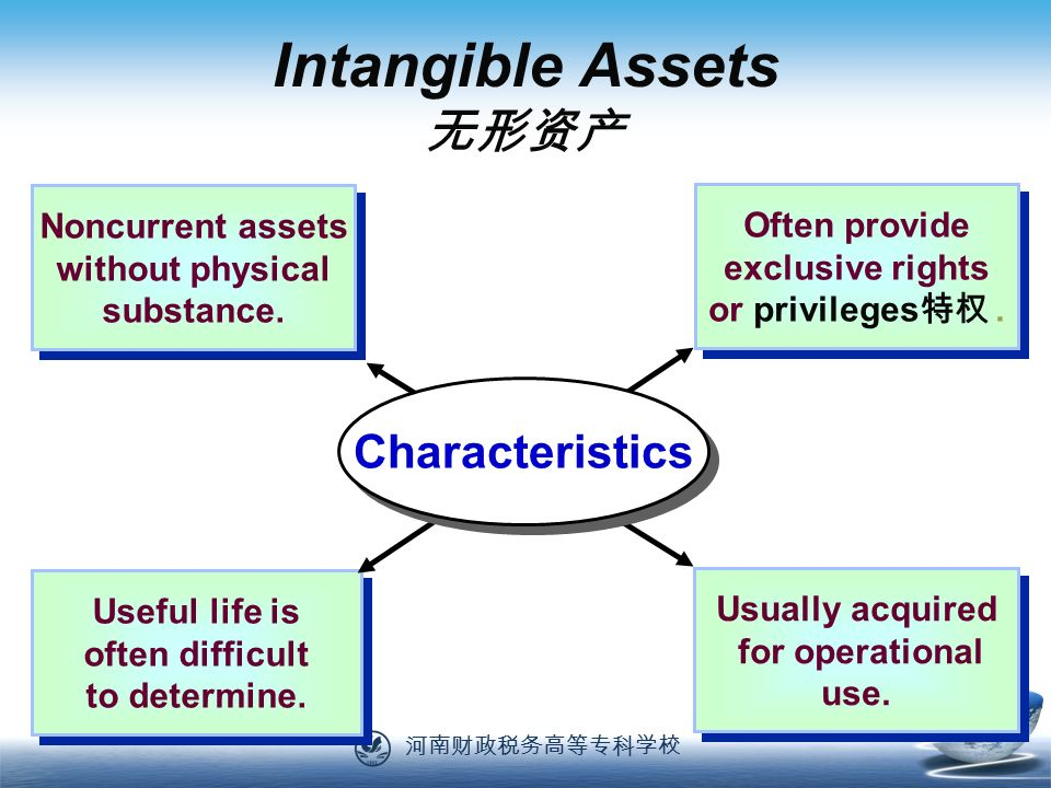 河南财政税务高等专科学校 57 Noncurrent assets without physical substance.