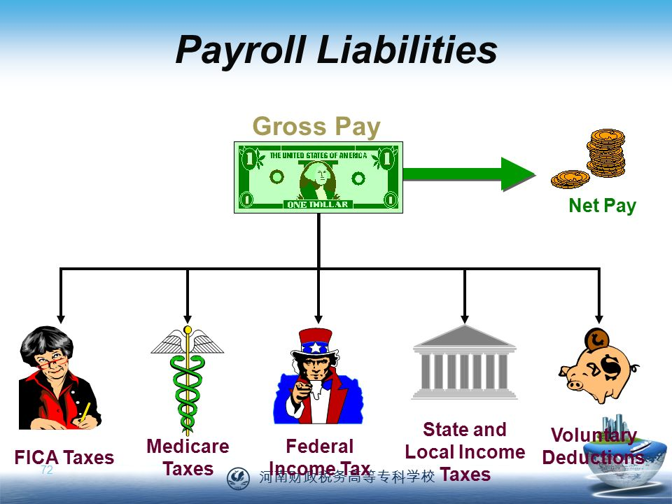 河南财政税务高等专科学校 72 Net Pay Payroll Liabilities Medicare Taxes State and Local Income Taxes FICA Taxes Federal Income Tax Voluntary Deductions Gross Pay