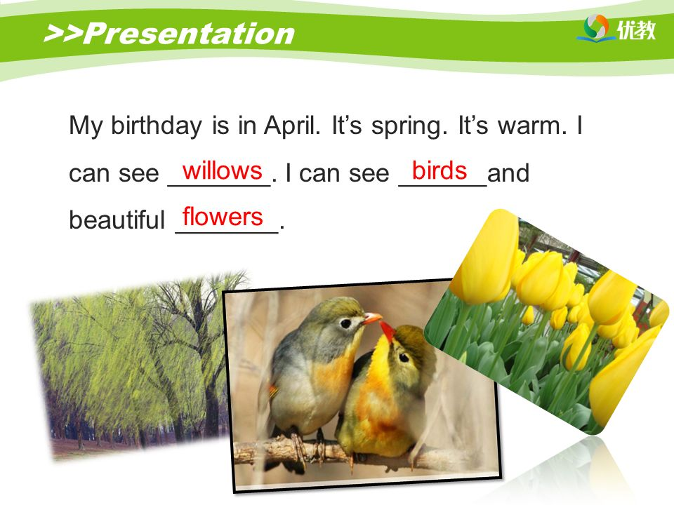 >>Presentation My birthday is in April. It's spring.