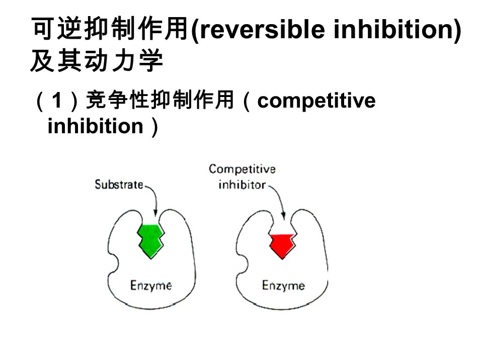 可逆抑制作用 (reversible inhibition) 及其动力学 ( 1 )竞争性抑制作用( competitive inhibition )