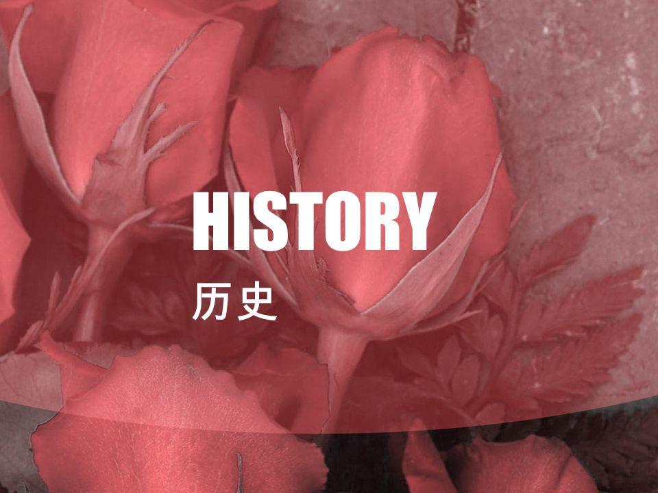 HISTORY 历史